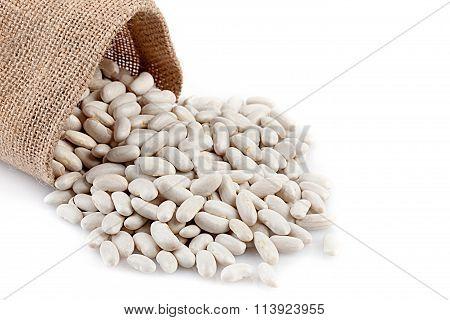 White Beans Closeup