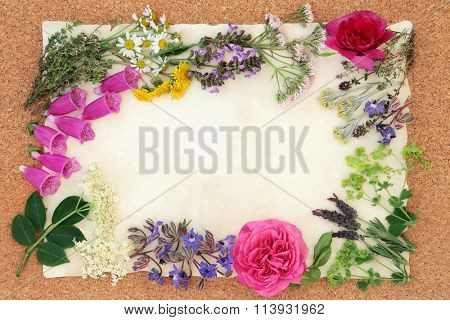 Summer flower and herb selection used in alternative herbal medicine on parchment paper over cork background.
