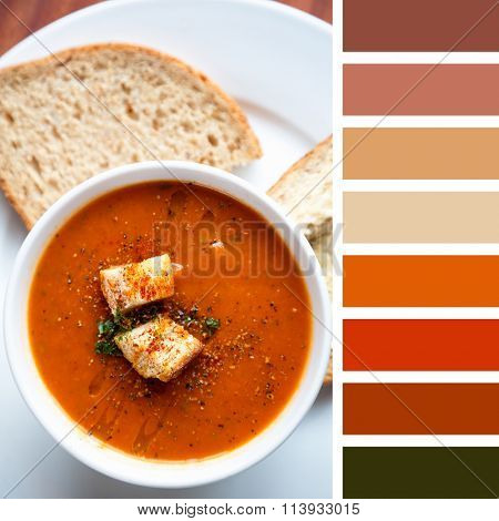 A bowl of fresh tomato soup, garnished with oil, herbs and croutons, and served with wholemeal bread. In a colour palette with complimentary colour swatches.