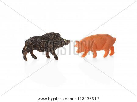 toy pig and wild boar