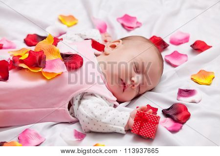 Little Baby With Rose Petals