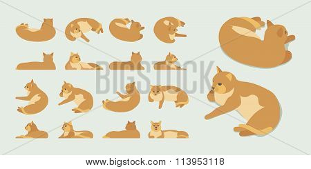 Isometric red lying cat