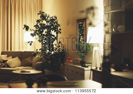 Room interior with sofa, green tree, commode and lighted lamps