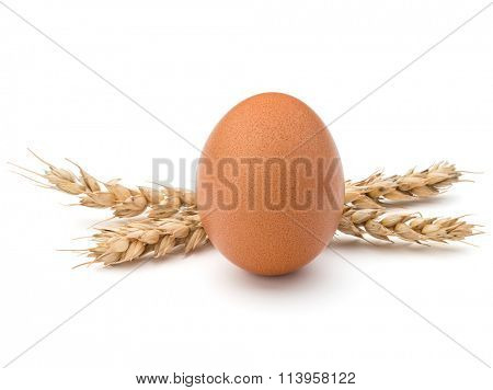Egg and wheat ears isolated on white background cutout