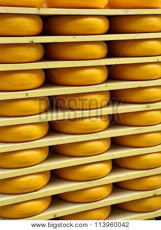 Emmental Cheese During Ripening On The Shelves Of The Dairy Mountain