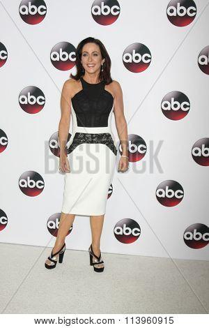 LOS ANGELES - JAN 9:  Patricia Heaton at the Disney ABC TV 2016 TCA Party at the The Langham Huntington Hotel on January 9, 2016 in Pasadena, CA