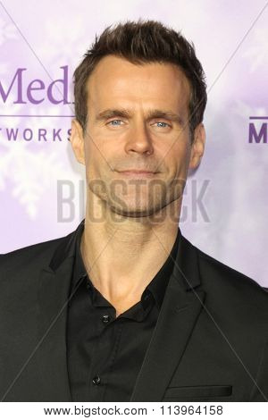 LOS ANGELES - JAN 8:  Cameron Mathison at the Hallmark Winter 2016 TCA Party at the Tournament House on January 8, 2016 in Pasadena, CA