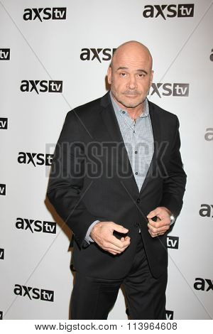 LOS ANGELES - JAN 8:  Bas Rutten at the AXS TV Winter 2016 TCA Cocktail Party at the The Langham Huntington Hotel on January 8, 2016 in Pasadena, CA