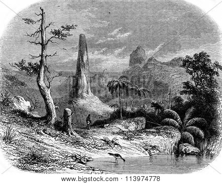 A Landscape in Sao Tome, vintage engraved illustration. Magasin Pittoresque 1853.