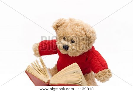 Teddy Reading