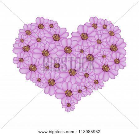 Violet Yarrow Flowers in A Heart Shape