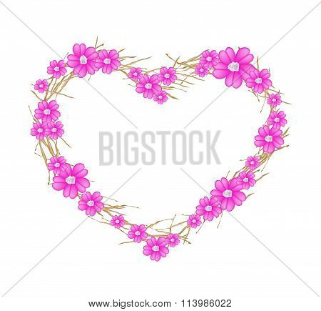 Pink Yarrow Flowers Forming in A Heart Shape