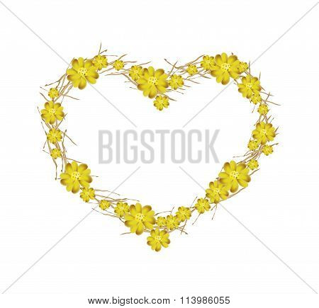Yellow Yarrow Flowers Forming in A Heart Shape