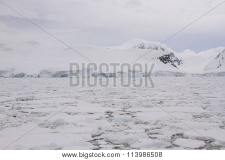 Field Of Pack Ice, Antarctica