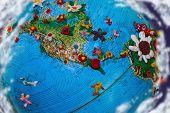 Flowered Earth North America