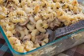 foto of crimini mushroom  - Two classic comfort foods come together as one in this baked stroganoff macaroni and cheese - JPG