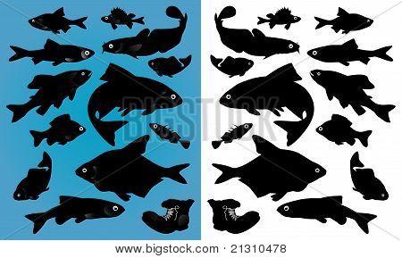 鱼剪影 库存矢量图和库存照片