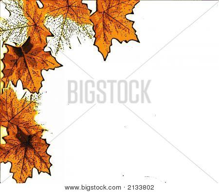 Oranje bladeren