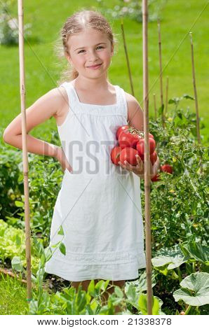 Vegetable garden - little girl with picked organic tomatoes