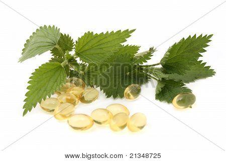 Nettle Capsules