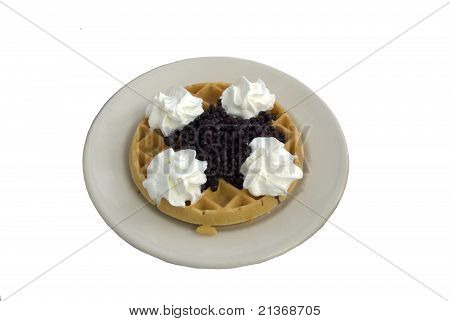 Delicious Blueberry Waffle