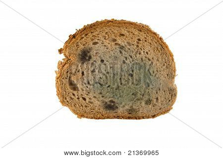 Slice Of Moldy Bread