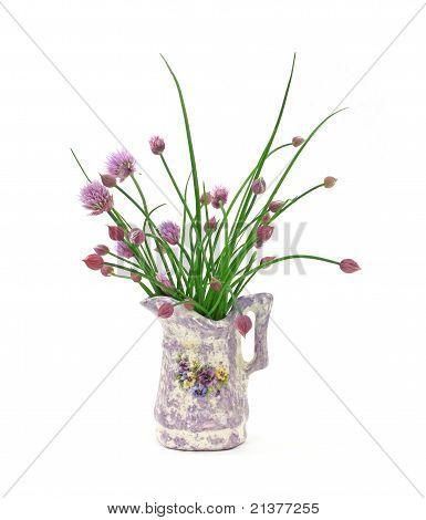 Budding Chives In Vase