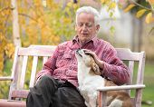Old Man With Dog On Bench In Park poster