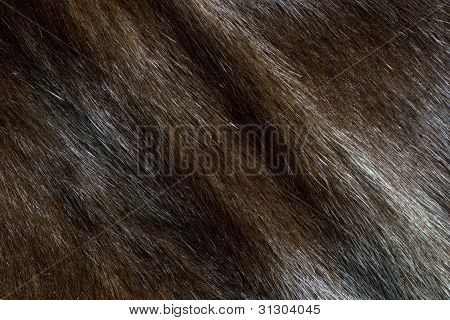 Abstract Brown Mink Fur Background (diagonal Texture)