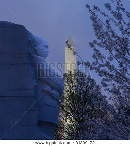 Cherry Blossoms And Mlk Monument