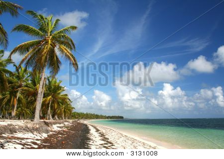 Deserted Caribbean Beach