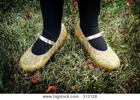 Lomo Golden Shoes