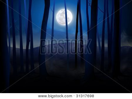 Dark Woods and Full Moon