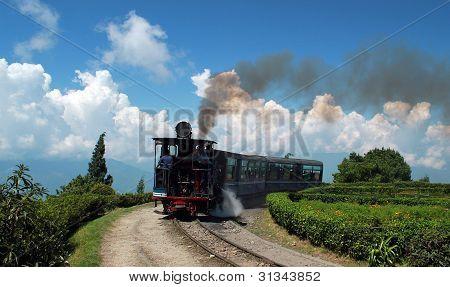 Ferro Himalayan de Darjeeling