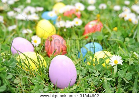 Easter Eggs On The Grass Flower