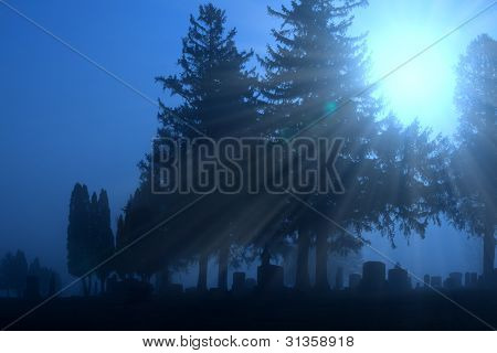 Cemetery in foggy morning light