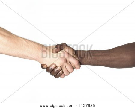 Multi Cultural Agreement