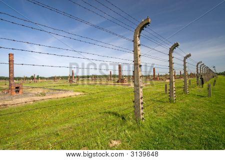 Barbed Wire Fence In Auschitz Birkenau