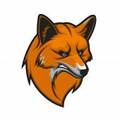 Fox Head Isolated Mascot Icon. Vector Snout Or Muzzle Of Angry Red Fox Animal Hunter, Wild Canine Pr poster