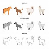 Vector Illustration Of Breeding And Kitchen Sign. Collection Of Breeding And Organic Stock Vector Il poster