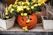 Halloween Street Decor. Jack O Lantern Pumpkins And Flowers In City Street, Holiday Decor Of Garden  poster