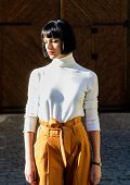 High Waisted. Woman Attractive Brunette Fashionable Outfit. Femininity And Emphasize Feminine Figure poster