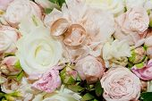 Bouquet Of Flowers. The Brides Bouquet. Bridal Bouquet. Floristics. Wedding Rings. Wedding Bouquet F poster