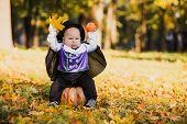 Cute Baby Boy In Vampire Costume Sitting On Pumpkin In Autumn Forest, Halloween poster