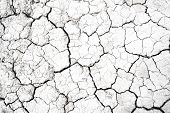 Dried And Cracked Desert Ground Texture Background poster