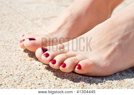 Womans Feet On Sand