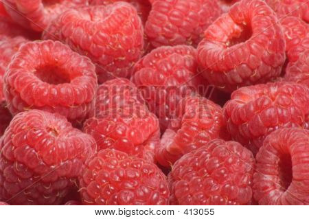 Red Raspberries Background