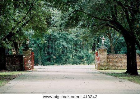 Jockey At Gate