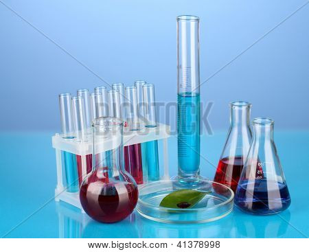 Test-tubes and green leaf tested in petri dish, on color background