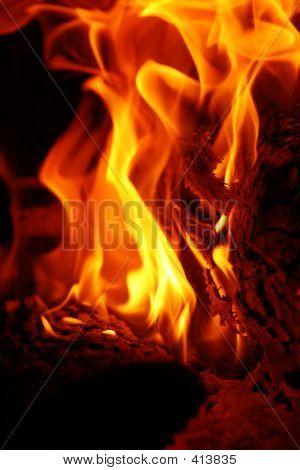 Fire 009